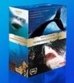 DVD Dobrodružství oceánů - S.Lichtag