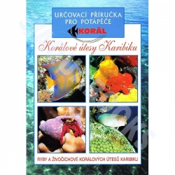 Kniha Korálové útesy Karibiku